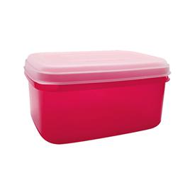 Jual Kotak Makan CLARIS 2924-Magenta